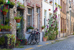 Bicycles and flowers Royalty Free Stock Image