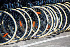 Bicycles front wheel tyres in a row Royalty Free Stock Photography