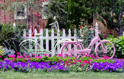 Bicycles in a garden Stock Image