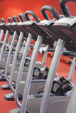 Bicycles in a gym. Bicycles in a row in a gym with red background and floor Royalty Free Stock Image