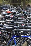 Bicycles locked up for the day royalty free stock photos