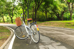 Bicycles in the park Royalty Free Stock Images