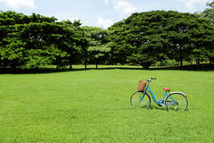Bicycles in the park Royalty Free Stock Photography