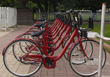 Bicycles in park. On a parking in the summer Stock Image