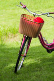 Bicycles in the park Stock Image