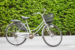 Bicycles in the park Stock Photography