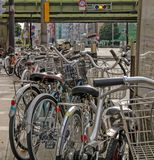 Bicycles parked along side of pathway royalty free stock images