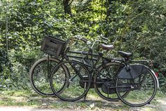 Bicycles parked near a forest. Two bicycles parked and standing in front of a forest Royalty Free Stock Images