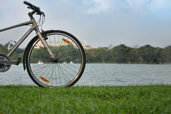 Bicycles parked near a quiet pond. Royalty Free Stock Image