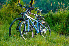 Bicycles parked near tha lake Royalty Free Stock Photo