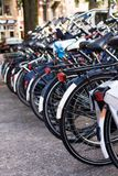 Bicycles parked in a row next to the road. Many bicycles parked in a row next to the road - focus on closest bicycle Royalty Free Stock Photography