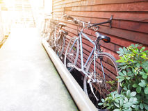 Bicycles parking at vintage wooden wall. Row of bicycles parking at vintage wooden wall near by narrow footpath Royalty Free Stock Photography