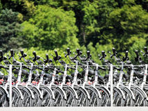 Bicycles on passenger ship Stock Photos