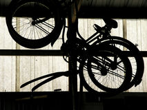 Bicycles from the past. Bicycles hanging disused stock images