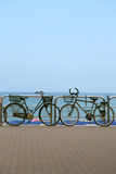 Bicycles at the promenade Royalty Free Stock Photos