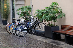 Bicycles in the Rain Royalty Free Stock Image