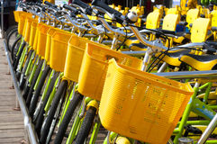 Bicycles for rent Royalty Free Stock Photo