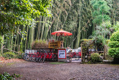 Bicycles for rent at bamboo forest of Arashiyama. Kyoto, Japan - May 7, 2016: Bicycles for rent at bamboo forest of Arashiyama, Kyoto, Japan. Arashiyama is a Royalty Free Stock Photo