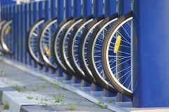Bicycles. Rent a bike rack with bicycles Stock Photos