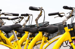 Bicycles for rent detail Royalty Free Stock Image