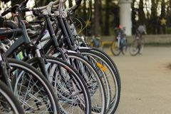 Bicycles for rent parked in group stock image