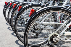 Bicycles for rent stand in a row Stock Photography