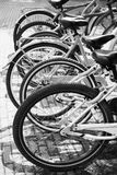 Bicycles for rent stand in row on parking lot Royalty Free Stock Photography