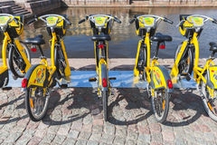 Bicycles for rent stand in a row, rear view Royalty Free Stock Images