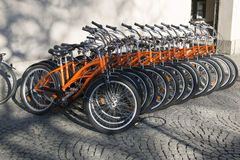 Bicycles for rent. Bicycles to rent for sightseeing tour in Munich royalty free stock images