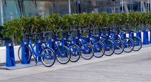 Bicycles. Renting blue bicycles close up Stock Photography