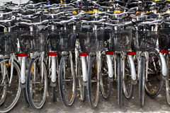 Bicycles renting shop pattern rows parking. In balearic islands Stock Photo