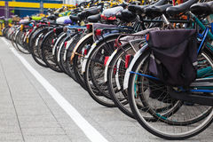 Bicycles in a row Stock Photography