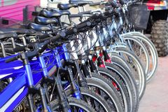 Bicycles in a row many in a cycle rent store Royalty Free Stock Photography
