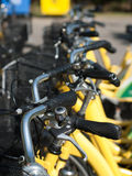 Bicycles row. Row of bicycles waiting for renting Stock Images