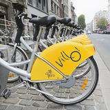 Bicycles of self-service Villo in Brussels Stock Photo