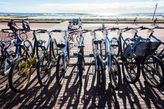 Bicycles Shadows Cyclists Royalty Free Stock Image