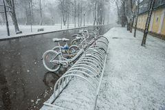 Bicycles smoothly covered with fresh snow after weather phenomen. Scenic view of a row of bicycles smoothly covered with fresh snow after weather phenomena Stock Images