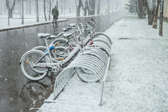 Bicycles smoothly covered with fresh snow after weather phenomen. Scenic view of a row of bicycles smoothly covered with fresh snow after weather phenomena Stock Photo