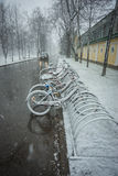 Bicycles smoothly covered with fresh snow after weather phenomena. Scenic view of a row of bicycles smoothly covered with fresh snow after weather phenomena Royalty Free Stock Photography