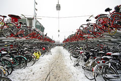 Bicycles in the snow in Amsterdam the Netherlands Stock Images