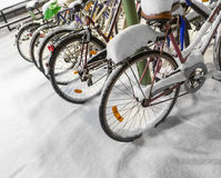 Bicycles in snow Royalty Free Stock Image