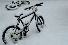 Bicycles in Snow Stock Image
