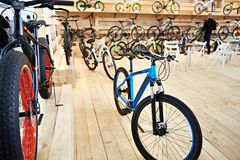 Bicycles in sports shop Stock Images