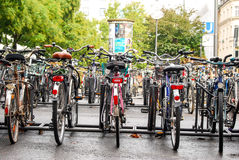 Bicycles stand chained at stands Royalty Free Stock Photography