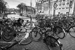 Bicycles stand on a parking place in Amsterdam Stock Image