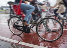 Bicycles on the streets of the city. Bike traffic on bicycle paths in a densely populated city Royalty Free Stock Photo