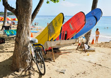 Bicycles and Surfboards. Honolulu, Hawaii, USA: March7, 2011 Royalty Free Stock Image