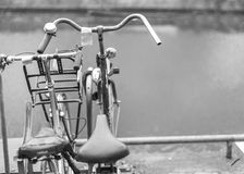 Bicycles together Royalty Free Stock Image