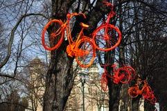 Bicycles. On trees. Riga, Latvia Stock Image