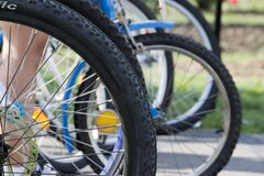 Bicycles waiting turn in agility competition. Stock Photography